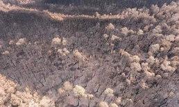 """ประมวลภาพมุมสูง ไฟผลาญ """"ป่าพรุควนเคร็ง"""" วอดหลายร้อยไร่"""