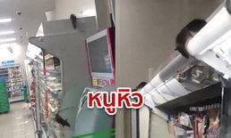 โซเชียลญี่ปุ่นผวา! คลิปฝูงหนูบุกกินสินค้าร้านสะดวกซื้อกลางกรุงโตเกียว ตอนไร้ลูกค้า