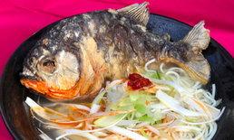 """ญี่ปุ่นชวนเปิบพิสดาร """"ราเมนปลาปิรันย่า"""" ขายแค่ 1,000 ถ้วย"""