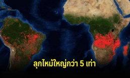 """นาซาเปิดเผยภาพไฟป่า """"ป่าแอฟริกา"""" ขนาดใหญ่กว่าป่าแอมะซอน 5 เท่า"""