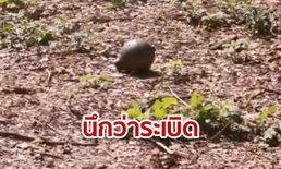 เชียงใหม่ระทึก คนตัดหญ้าเจอวัตถุต้องสงสัยคล้ายระเบิด สุดท้ายแค่ลูกตุ้มเหล็ก