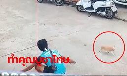 คดีพลิกคนละม้วน ผัวเมียคลิปขโมยหมาหน้าบ้าน อ้างแค่หวังดีกลัวถูกรถทับ