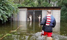สุนัขก็รักชีวิต...เจ้าของหนีพายุเฮอร์ริเคน ทิ้งสุนัข 6 ตัวให้จมน้ำ