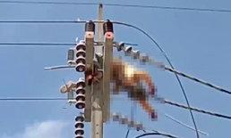 ภาพสยอง ไฟฟ้าแรงสูงช็อตคนงานร่างไหม้เกรียมคาเสา เพื่อนยันตัดไฟแล้ว