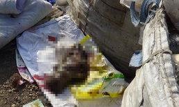 สุดสลด-พบศพทารกขาดครึ่งถูกทิ้งกองขยะ คาดแม่ใจร้ายทิ้งลงถังหลังเพิ่งคลอด