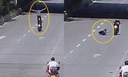 """3 วินาทีจบ! ชายร่วงจูบถนน หลังเมายืนทำท่า """"พญาอินทรีสยายปีก"""" บนมอเตอร์ไซค์"""