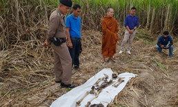 โครงกระดูกปริศนาโผล่กลางป่าอ้อย! หวั่นฆาตกรรมอำพราง คาดเป็นบุคคลสูญหาย 3 เดือนก่อน