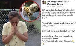 อ้อนวอนทั้งน้ำตา-เจ้าของโพสต์ขอให้นำหมามาคืน หลังพบหลักฐานจากกล้อง