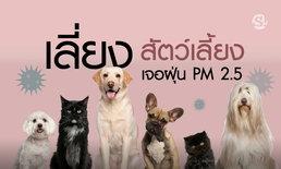 """หลีกเลี่ยง """"ฝุ่นละออง PM 2.5"""" สัตวแพทย์แนะวิธีดูแลสัตว์เลี้ยงไม่ให้เจอผลกระทบ"""