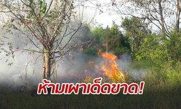 """ผู้ว่าฯ โคราชห่วงปัญหา """"PM 2.5"""" สั่ง 32 อำเภอห้ามเผาป่าเด็ดขาด-ฝ่าฝืนมีโทษหนัก"""