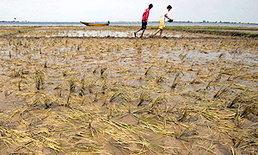 อินเดียอ่วมน้ำท่วมหนักหวั่นขาดอาหาร