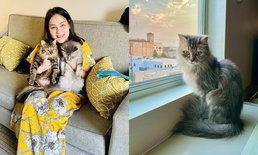 """""""นาตาลี เดวิส"""" เดินทางถึง LA แล้ว น่ารักมากบอกเหตุผลที่พาแมวไปด้วย"""
