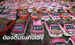 แท็กซี่นับพันคันจอดร้าง เปลี่ยนเป็นแปลงผัก-เลี้ยงกบ ร้องไป 3 กระทรวงยังไม่มีใครช่วย
