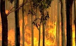 ไฟไหม้ชุมชนตลาดล่างชลบุรีวอด5คูหาตาย1