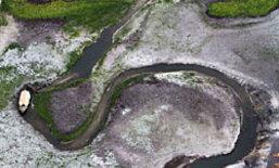 วิกฤต! ลุ่มน้ำอเมซอน บราซิลประสบภัยแล้ง