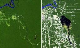 ภาพถ่ายดาวเทียมการเปลี่ยนแปลงของผิวโลก