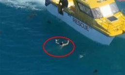 คลิประทึก! ชายออสซี่ลอยคอกลางทะเล หวิดโดนฉลามรุมกิน