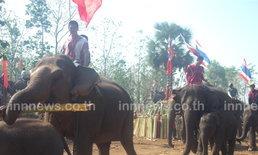 ชนเผ่าชาวปากะญอจัดงานวันอนุรักษ์ช้างไทย