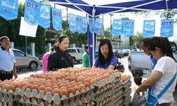 ชาวพิษณุโลกแห่ซื้อไข่ธงฟ้าราคาประหยัด