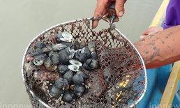 ชลบุรีเร่งผันน้ำำหอยแครงตาย 800ไร่