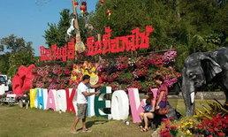 วันเที่ยวในเทศกาลตรุษจีนที่สวนสัตว์เปิดคึก