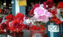 ชัยนาท ตลาดดอกไม้ - ของขวัญ คึกคัก