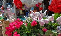 โคราชดอกกุหลาบแพงเกือบ200บาทต่อดอก