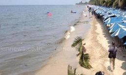 คราบน้ำมันก้อนใหญ่บุกหาดบางแสนอีกเร่งสกัด
