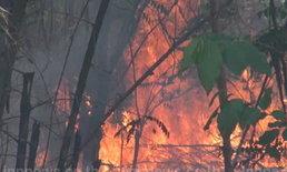 ไฟไหม้ป่าข้างทางสุโขทัย โชคดีสกัดทัน