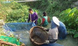 ผู้เลี้ยงกุ้งทนภัยแล้งไม่ไหวทิ้งบ่อขายแรงงาน