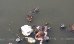 พบศพเด็กลอยคูน้ำข้างกำแพงหมู่บ้านย่านปทุมฯ