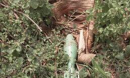 พบลูกปืน ค.60 ในป่ากล้วยกลางเมืองโคราช