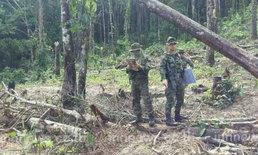 ตราด รวบผู้รุกป่า 7 ราย ดำเนินคดีแล้ว 1