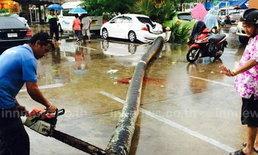 พายุถล่มภูเก็ต ต้นตาลล้มทับหญิงเจ็บ 1 รถพัง 2