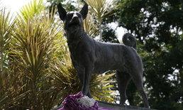 บรรจุกระดูกคุณทองแดงที่ฐานอนุสาวรีย์ในศูนย์รักษ์สุนัข 30 ธ.ค.