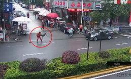 ระทึก! สุนัขคลั่งไล่กัดประชาชนกว่า 20 คนในจีน