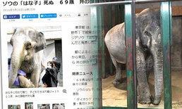 """""""ฮานาโกะ"""" ช้างทูตไทยในญี่ปุ่น สิ้นชีวิตแล้ววัย 69 ปี"""