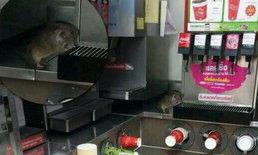 ซีพี ออลล์ ยอมรับภาพหนูตู้กดน้ำ สั่งปิดร้าน-ทำความสะอาดแล้ว