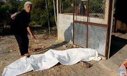 ผัวเฒ่าโดนเมียสาวโหดพาพวกรุมกรอกยาพิษฆ่า ไม่ตายใช้มีดแทงซ้ำ