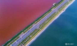 ดูสวย! ทะเลเดดซีจีนกลายเป็นหม้อไฟสองรส แดงครึ่งเขียวครึ่ง