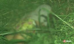 ลวงฆ่าโหดสาวใหญ่ ตีหัวแตกยับ 6 แผล ทิ้งศพหมกพงหญ้า