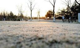 เซี่ยงไฮ้อุณหภูมิลดต่ำ น้ำค้างแข็งเกาะทั่วใบหญ้า สวยแทบลืมหายใจ