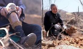 เสียขาไม่เสียความตั้งใจ ทหารผ่านศึกวัยชรา ใช้เวลา 20 ปี ปลูกต้นไม้กว่า 17,000 ต้น