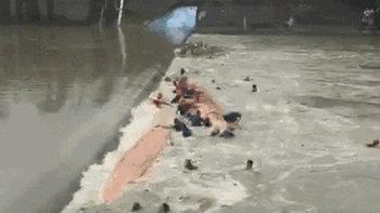 ซ้อมแข่งเรือมังกร นาทีชีวิตล่มหน้าเขื่อน น้ำวนกลืนร่างฝีพาย 11 ศพ