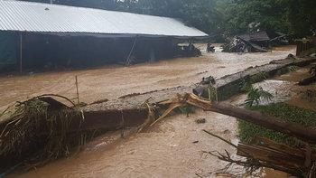 วิกฤตหนักแม่ฮ่องสอน ฝนถล่มทั้งคืนน้ำป่าทะลักเข้าถ้ำปลา ที่นา-บ้านคนอ่วมนับร้อยไร่
