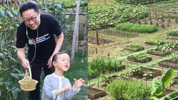 """เปิดอาณาจักร ผักผลไม้ หลังบ้าน """"เสี่ยตา ปัญญา"""" ออกผลให้กินได้ตลอดทั้งปี"""