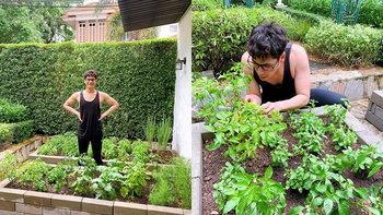 """""""ซี ศิวัฒน์"""" เปิดหลังบ้านหรู พาชมความงามแปลงผักสวนครัวที่ซ่อนอยู่"""