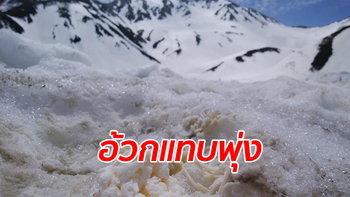 """อะไรอยู่ใต้หิมะ? คนญี่ปุ่นแฉขุดเจอ """"ขยะสด-อุจจาระ"""" เตือนราดน้ำแดงกินอาจได้ของแถม"""