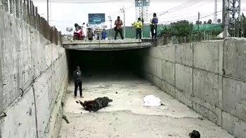 สาวหล่อขี่รถฝ่าป้าย ร่วงตกจุดก่อสร้างถนน สังเวยชีวิตในวัยเบญจเพส