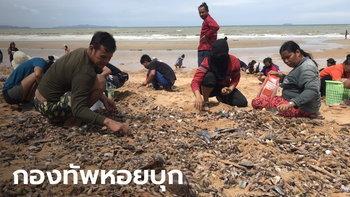 """ชาวบ้านฮือแห่เก็บ """"หอย"""" นับแสนตัวบุกเกยตื้นชายหาดจอมเทียน พัทยา"""